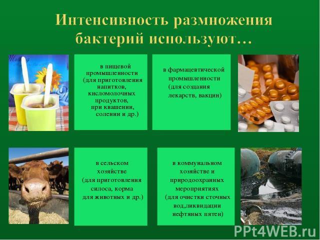 в пищевой промышленности (для приготовления напитков, кисломолочных продуктов, при квашении, солении и др.) в сельском хозяйстве (для приготовления силоса, корма для животных и др.) в фармацевтической промышленности (для создания лекарств, вакцин) в…