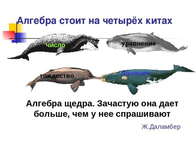 Алгебра стоит на четырёх китах Число Тождество Функция Алгебра щедра. Зачастую она дает больше, чем у нее спрашивают Ж.Даламбер число уравнение тождество функция