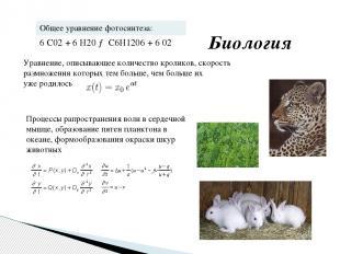 Уравнение, описывающее количество кроликов, скорость размножения которых тем бол