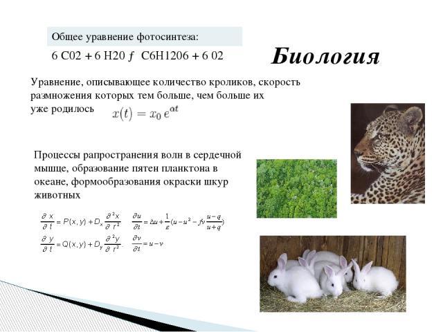 Уравнение, описывающее количество кроликов, скорость размножения которых тем больше, чем больше их уже родилось Процессы рапространения волн в сердечной мышце, образование пятен планктона в океане, формообразования окраски шкур животных Биология Об…
