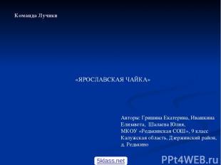 «ЯРОСЛАВСКАЯ ЧАЙКА» Авторы: Гришина Екатерина, Ивашкина Елизавета, Шалаева Юлия,