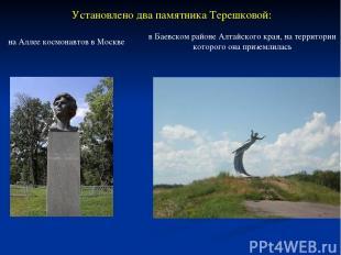 Установлено два памятника Терешковой: на Аллее космонавтов в Москве в Баевском р