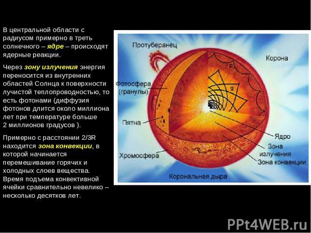В центральной области с радиусом примерно в треть солнечного – ядре – происходят ядерные реакции. Через зону излучения энергия переносится из внутренних областей Солнца к поверхности лучистой теплопроводностью, то есть фотонами (диффузия фотонов дли…