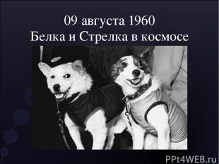 09 августа 1960 Белка и Стрелка в космосе