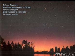 Звёзды Ориона и ярчайшая звезда неба – Сириус прекрасно видны даже на засвеченно