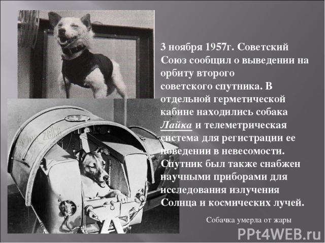 3 ноября 1957г. Советский Союз сообщил о выведении на орбиту второго советского спутника. В отдельной герметической кабине находились собака Лайка и телеметрическая система для регистрации ее поведении в невесомости. Спутник был также снабжен научны…