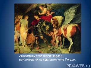 Андромеду спас герой Персей, прилетевший на крылатом коне Пегасе. П.П. Рубенс «П