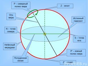Z - зенит Z' - надир Истинный горизонт N – точка севера S – точка юга Р – северн