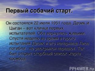 Первый собачий старт. Он состоялся 22 июля 1951 года. Дезик и Цыган – вот клички