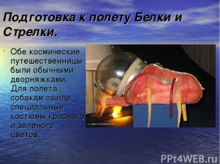 Подготовка к полету Белки и Стрелки. Обе космические путешественницы были обычны