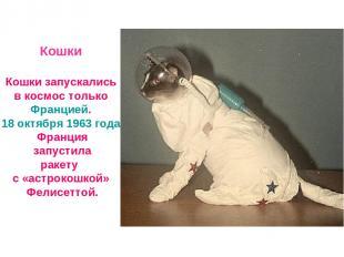 Кошки Кошки запускались в космос только Францией. 18 октября 1963 года Франция з