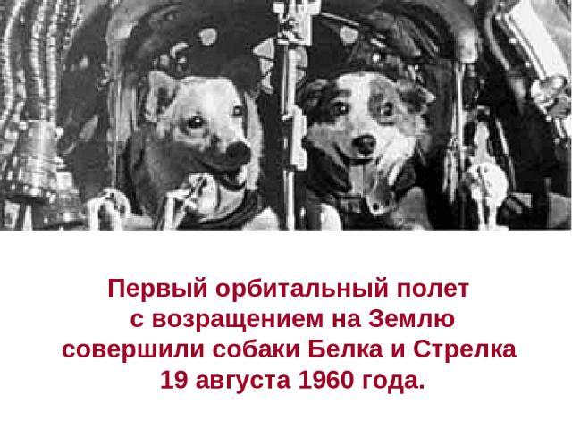 Первый орбитальный полет с возращением на Землю совершили собаки Белка и Стрелка 19 августа 1960 года.