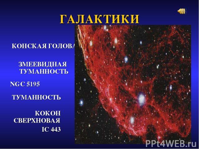 ГАЛАКТИКИ КОНСКАЯ ГОЛОВА ЗМЕЕВИДНАЯ ТУМАННОСТЬ NGC 5195 ТУМАННОСТЬ КОКОН СВЕРХНОВАЯ IC 443