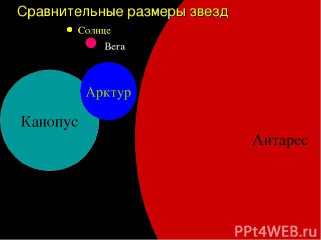 Антарес Сравнительные размеры звезд Канопус Арктур Солнце Вега