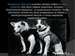 20 августа 1960 года в космос летали собаки Белка и Стрелка, это были первые жив