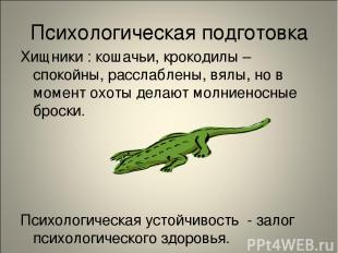Психологическая подготовка Хищники : кошачьи, крокодилы – спокойны, расслаблены,