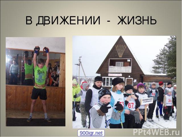 В ДВИЖЕНИИ - ЖИЗНЬ 900igr.net