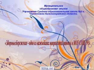 Муниципальное общеобразовательное Учреждение Средняя образовательная школа №3 г.