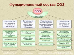 * Функциональный состав СОЗ СОЗ Информационное обеспечение Организация деятельно