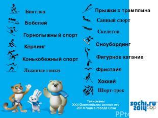 Биатлон Бобслей Горнолыжный спорт Кёрлинг Конькобежный спорт Лыжные гонки Прыжки