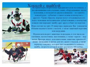 Хоккей с шайбой Во время игры спортсмены передвигаются не на коньках, а на алюми