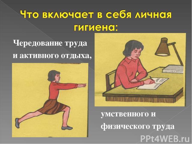 Чередование труда и активного отдыха, умственного и физического труда