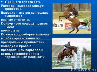 Конный спорт У конного спорта есть Разряды: выездка конкур, троеборье. Выездка -