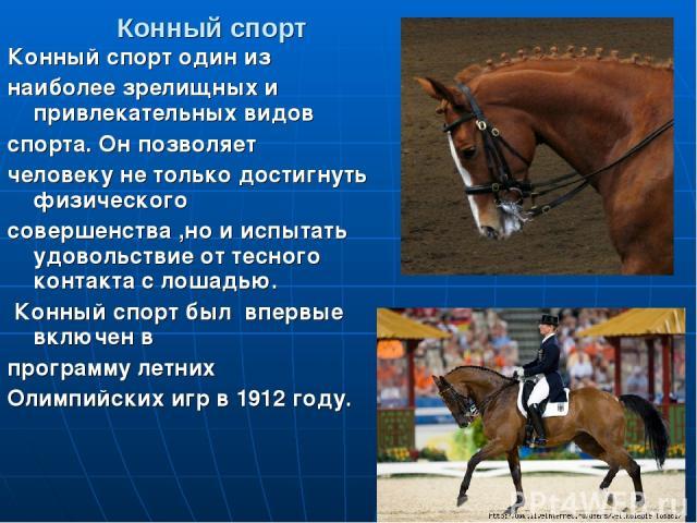 Конный спорт Конный спорт один из наиболее зрелищных и привлекательных видов спорта. Он позволяет человеку не только достигнуть физического совершенства ,но и испытать удовольствие от тесного контакта с лошадью. Конный спорт был впервые включен в пр…