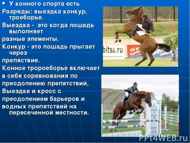 Конный спорт У конного спорта есть Разряды: выездка конкур, троеборье. Выездка - это когда лошадь выполняет разные элементы. Конкур - это лошадь прыгает через препяствие. Конное тророеборье включает в себя соревнования по преодолению препятствий, Вы…