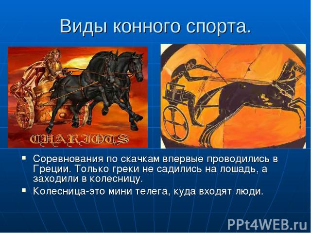Виды конного спорта. Соревнования по скачкам впервые проводились в Греции. Только греки не садились на лошадь, а заходили в колесницу. Колесница-это мини телега, куда входят люди.