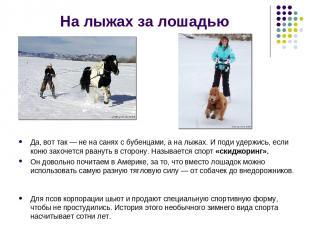 На лыжах за лошадью Да, вот так — не на санях с бубенцами, а на лыжах. И поди уд