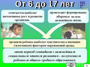 организм ребенка наиболее чувствителен к внешним (экзогенным) факторам окружающе