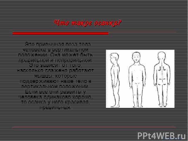 Это привычная поза тела человека в вертикальном положении. Она может быть правильной и неправильной. Это зависит от того, насколько слажено работают мышцы, которые поддерживают наше тело в вертикальном положении. Если все они развиты у человека один…
