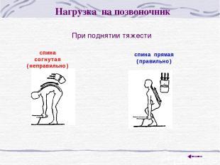 При поднятии тяжести Нагрузка на позвоночник спина согнутая (неправильно) спина
