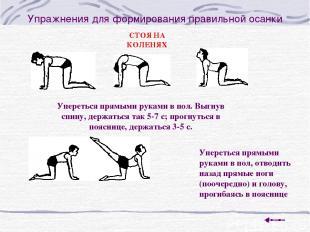 Упражнения для формирования правильной осанки Упереться прямыми руками в пол. Вы