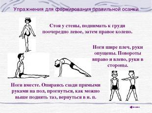 Упражнения для формирования правильной осанки Стоя у стены, поднимать к груди по
