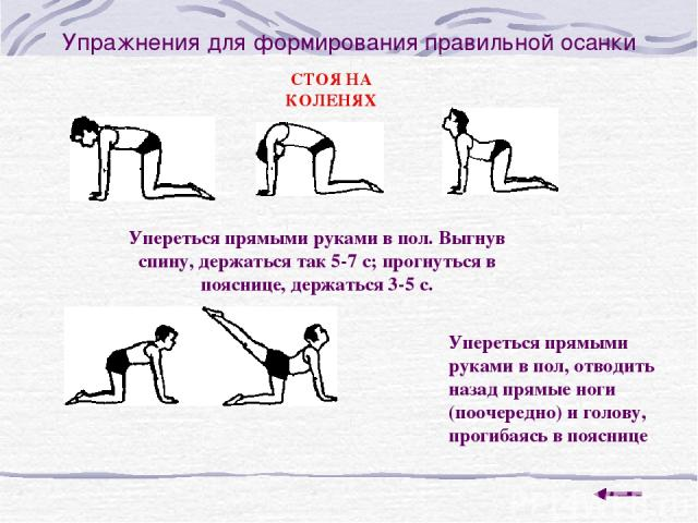 Упражнения для формирования правильной осанки Упереться прямыми руками в пол. Выгнув спину, держаться так 5-7 с; прогнуться в пояснице, держаться 3-5 с.  Упереться прямыми руками в пол, отводить назад прямые ноги (поочередно) и голову, прогибаясь в…