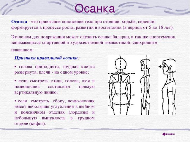 Осанка Осанка - это привычное положение тела при стоянии, ходьбе, сидении; формируется в процессе роста, развития и воспитания (в период от 5 до 18 лет). Эталоном для подражания может служить осанка балерин, а так же спортсменок, занимающихся спорти…