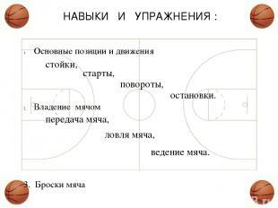НАВЫКИ И УПРАЖНЕНИЯ : Основные позиции и движения Владение мячом 3. Броски мяча