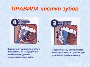 Зубная щетка располагается вертикально, направление движения от десны к режущему