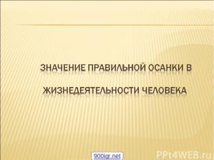 * 900igr.net