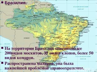 Бразилия. На территории Бразилии описано более 200видов москитов, 35 видов клопо