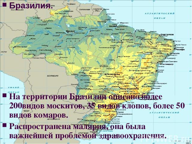 Бразилия. На территории Бразилии описано более 200видов москитов, 35 видов клопов, более 50 видов комаров. Распространена малярия, она была важнейшей проблемой здравоохранения.
