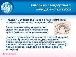 Алгоритм стандартного метода чистки зубов Разделить зубной ряд на несколько сегм