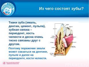 Из чего состоят зубы? Ткани зуба (эмаль, дентин, цемент, пульпа), зубная связка