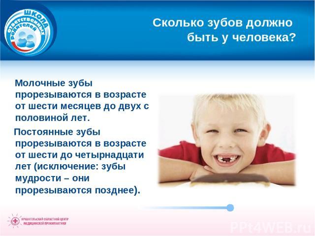 Сколько зубов должно быть у человека? Молочные зубы прорезываются в возрасте от шести месяцев до двух с половиной лет. Постоянные зубы прорезываются в возрасте от шести до четырнадцати лет (исключение: зубы мудрости – они прорезываются позднее).