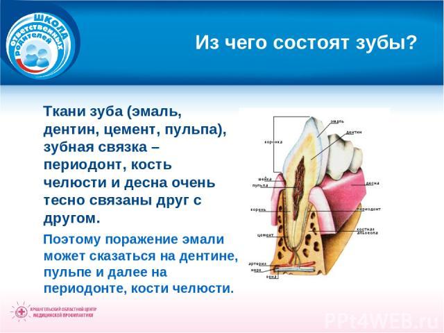 Из чего состоят зубы? Ткани зуба (эмаль, дентин, цемент, пульпа), зубная связка – периодонт, кость челюсти и десна очень тесно связаны друг с другом. Поэтому поражение эмали может сказаться на дентине, пульпе и далее на периодонте, кости челюсти.
