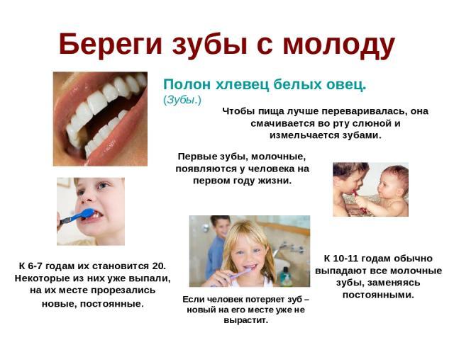 Береги зубы с молоду Полон хлевец белых овец. (Зубы.) Чтобы пища лучше переваривалась, она смачивается во рту слюной и измельчается зубами. Первые зубы, молочные, появляются у человека на первом году жизни. К 6-7 годам их становится 20. Некоторые из…
