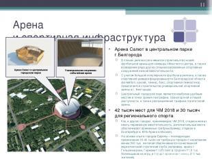 Арена и спортивная инфраструктура Арена Салют в центральном парке г.Белгорода В