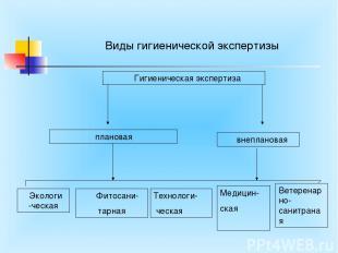 Виды гигиенической экспертизы Гигиеническая экспертиза плановая внеплановая Экол